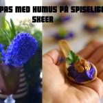 Tapas med lilla humus på spiselige skeer