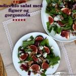 Radicchio salat med figner og gorgonzola ost