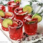 Frisk tranebær Margarita drink med ingefær-vanilje sirup