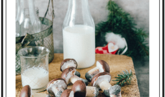 Champignon cookies – opskrift på de hyggeligste småkager